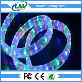Two Years Warranty 4 Wire Flat Flexible LED Rope Light