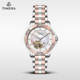 Special Designer Automatic Diamond Gift Watch for Lady71169
